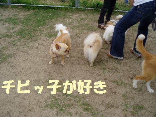 003_convert_20110606133350.jpg