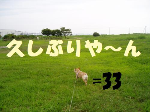 003_convert_20110730024150.jpg