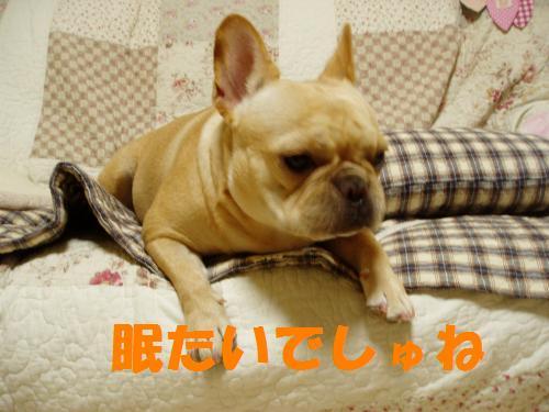 003_convert_20110825005923.jpg