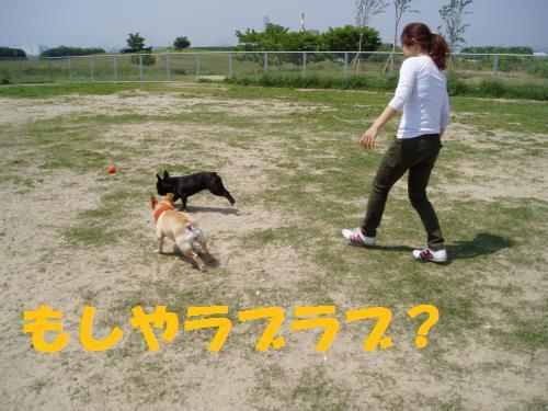 004_convert_20110521013753.jpg