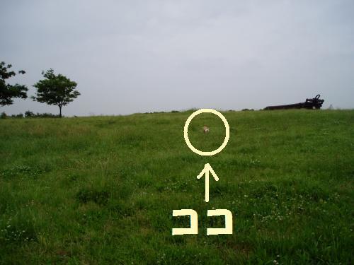 004_convert_20110603004840_convert_20110603024507.jpg