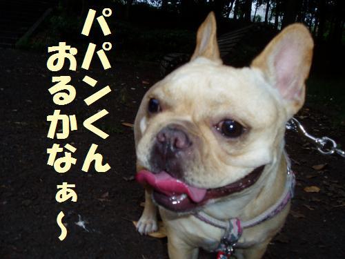 004_convert_20110702005907.jpg