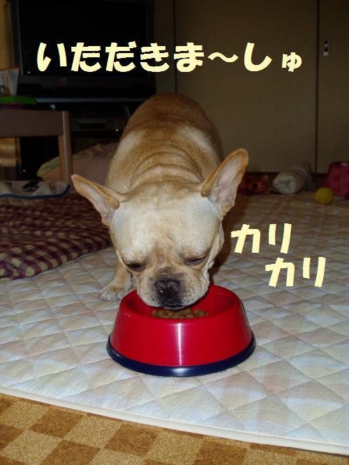 004_convert_20110719121825.jpg