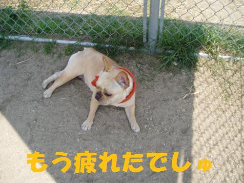 005_convert_20110521013831.jpg