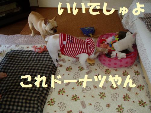 006_convert_20110624002041.jpg