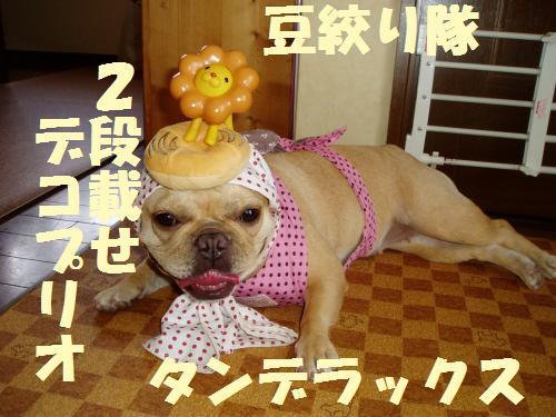 006_convert_20110728182047.jpg