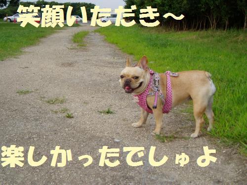 006_convert_20110730024323.jpg