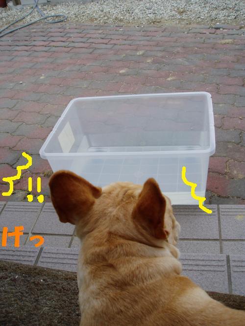 006_convert_20110804141146.jpg