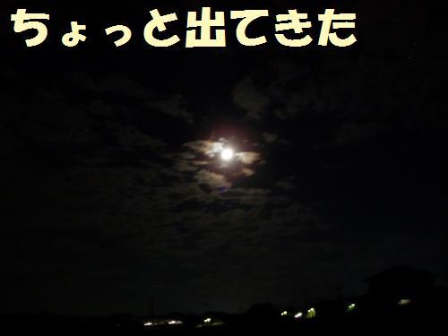 006_convert_20110912231431.jpg