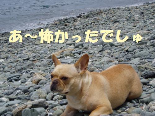 007_convert_20110706125437.jpg