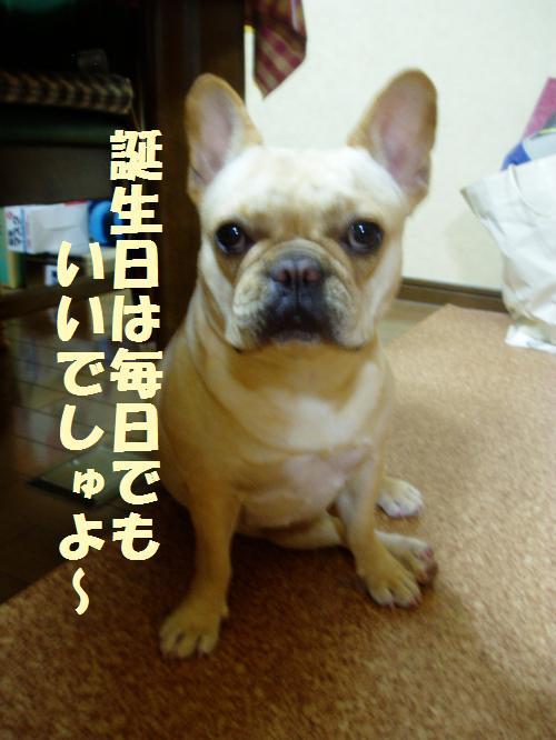 008_convert_20110529025226.jpg
