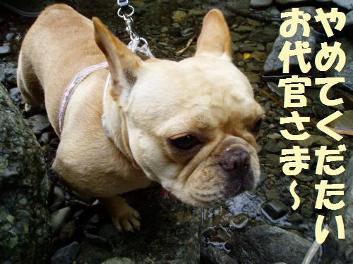 008_convert_20110714233007.jpg