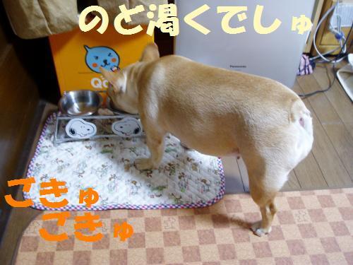 008_convert_20110814002324.jpg