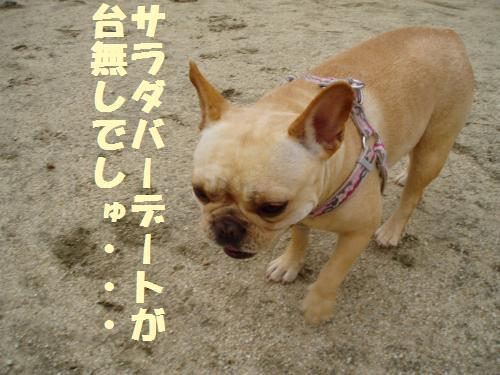 009_convert_20110526140004.jpg