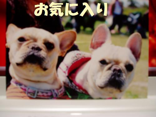 009_convert_20110604012155.jpg