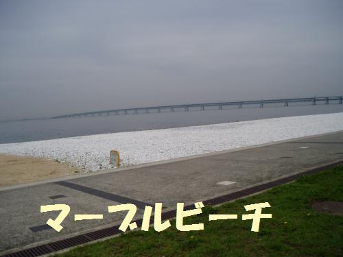009_convert_20110615234406.jpg