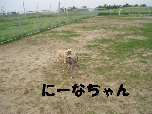 010_convert_20110603005204.jpg