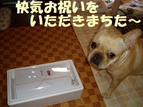 010_convert_20110811124806.jpg