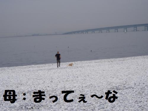 011_convert_20110615234518.jpg