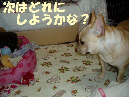 011_convert_20110917015457.jpg