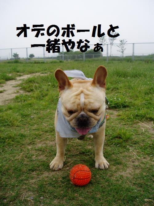 013_convert_20110610232749.jpg
