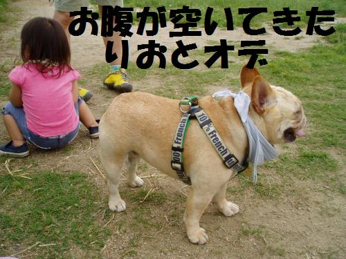 015_convert_20110610232910.jpg