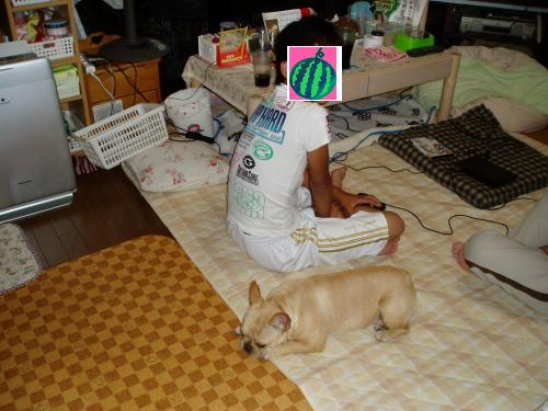 017_convert_20110804141852.jpg