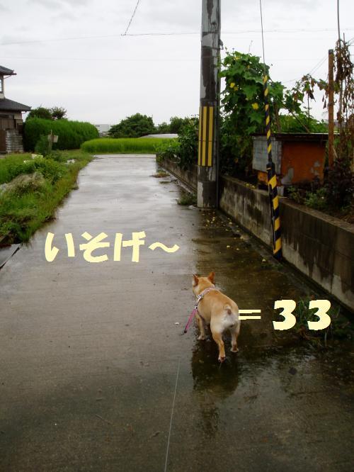 019_convert_20110904001209.jpg