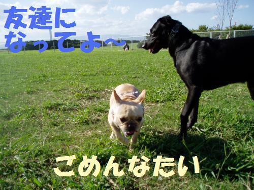 021_convert_20110906235416.jpg