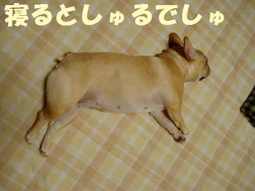 022_convert_20110825010819.jpg