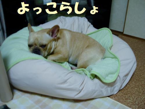 025_convert_20110825011012.jpg