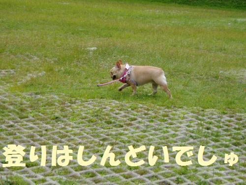 025_convert_20110902005116.jpg