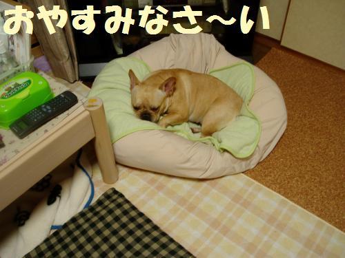 026_convert_20110825011042.jpg