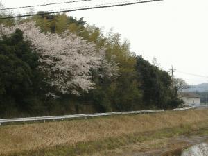 2012_0410ky5_co.jpg