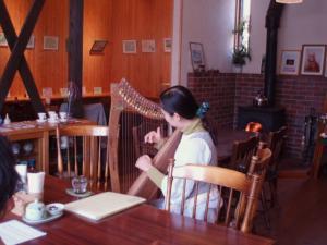 20110414アイリッシュハープ演奏2