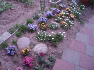 20110422庭の花