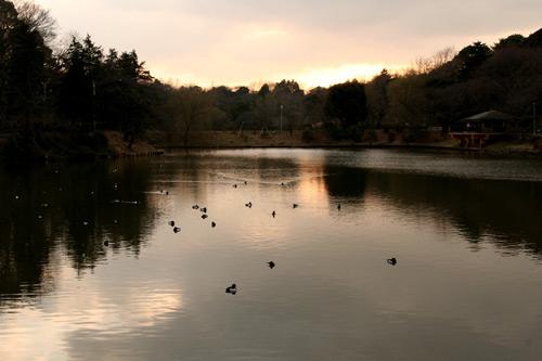 三ッ池公園オリジナル