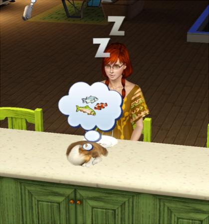 机の上で寝るマル