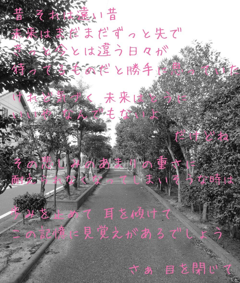 1_20120829224708.jpg