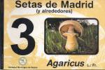 Setas_de_Madrid_3.jpg