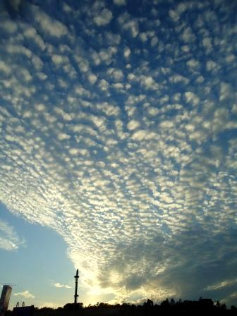 秋空 鱗雲 02