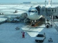 空港でお出迎え!