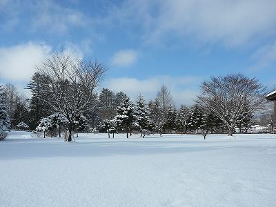 待望の雪!