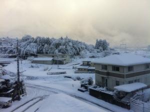 滋賀の雪③