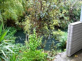 池内(裏の池)
