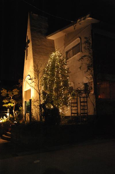 tree2010-1.jpg