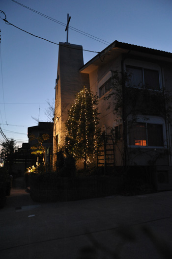 tree2010-2.jpg