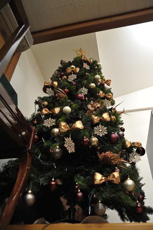 tree2010-b.jpg