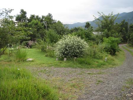 yamagarden2010906.jpg