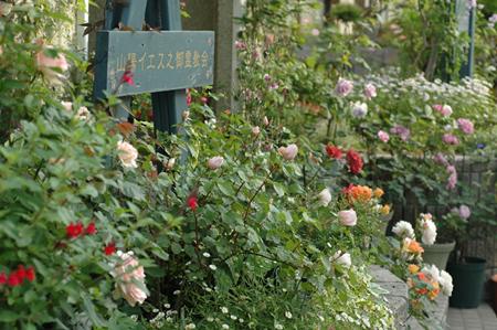 zenkei2012517-7a.jpg